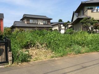 草刈り (2、).JPG