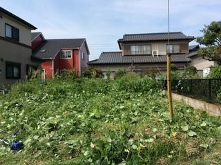 草刈り (3、).JPG