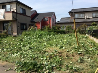 草刈り (4).JPG