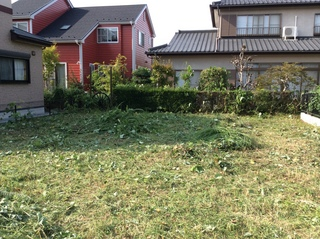草刈り (7).JPG